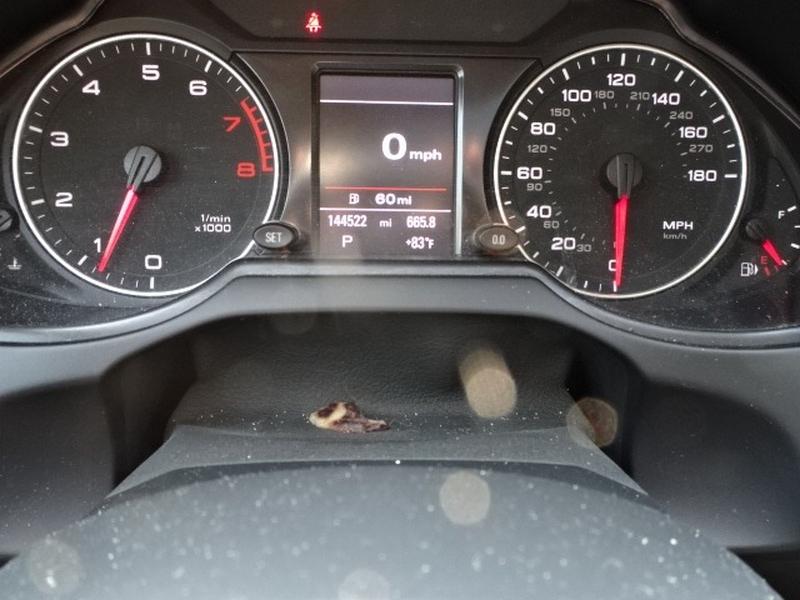 Audi Q5 2011 price $14,495