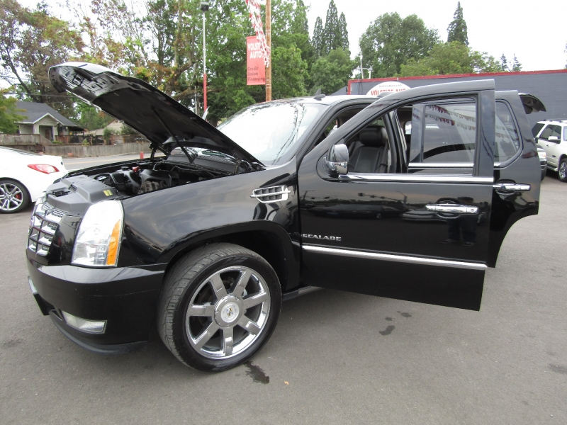 Cadillac Escalade 2010 price $14,977