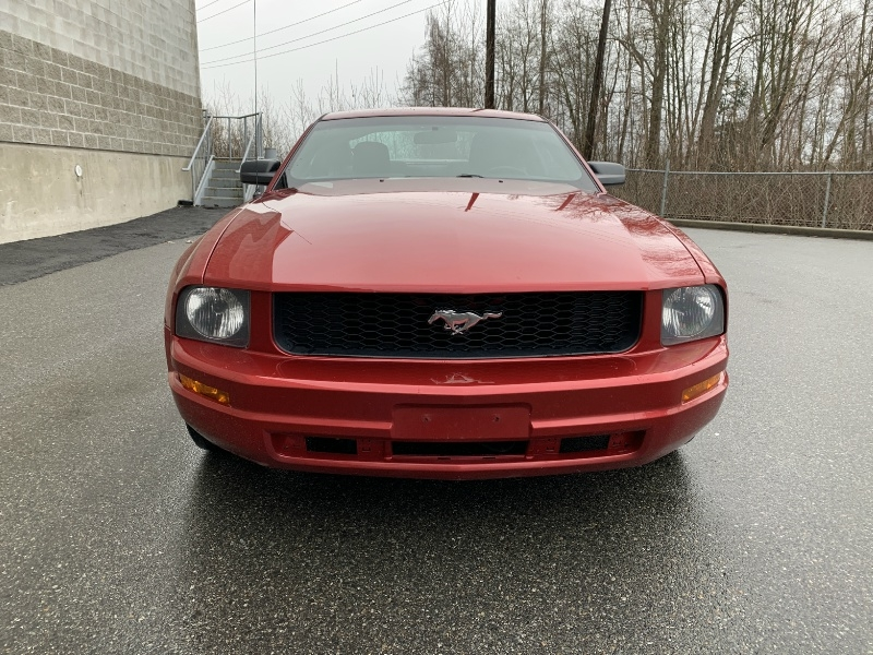 Ford Mustang 2005 price $4,800