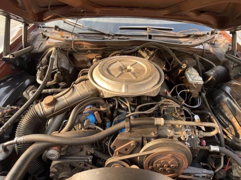 Ford Thunderbird 1978 price $9,000