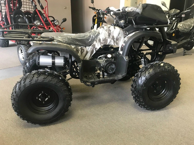 Other Makes Coolster 150 2019 price $1,750