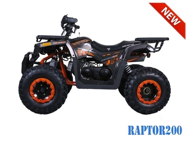 Other Makes Tao Tao Raptor 2019 price $2,200