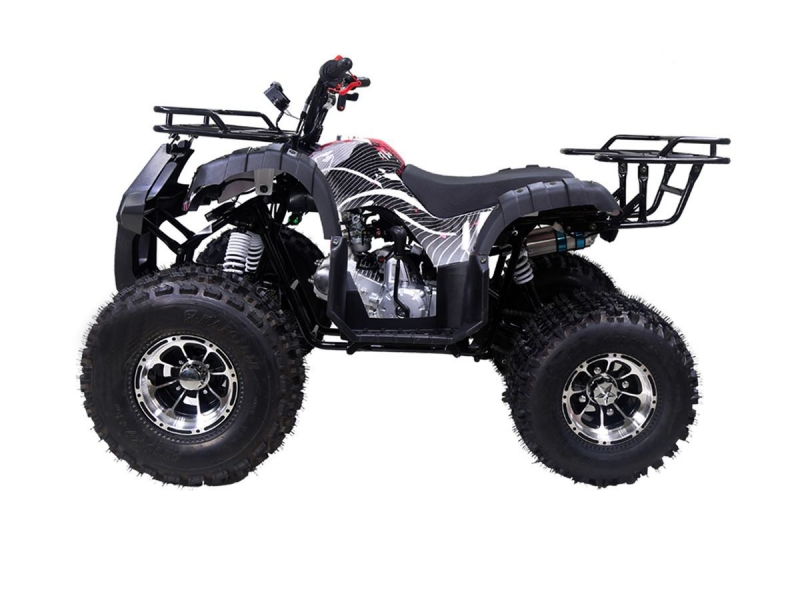 Other Makes TaoTao Tforce Deluxe 2020 price $1,200
