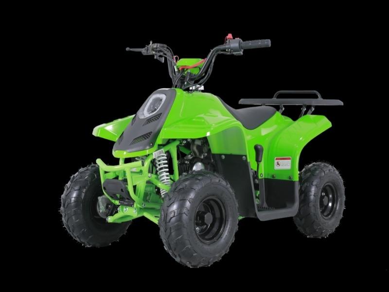 Other Makes TaoTao Rock 110cc 2020 price $770