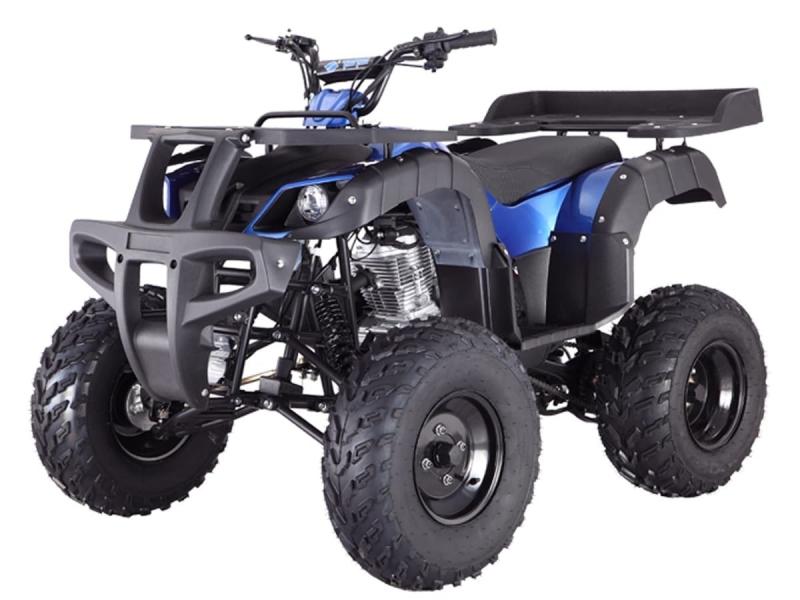 Other Makes Tao Rhino 250 2020 price $2,000
