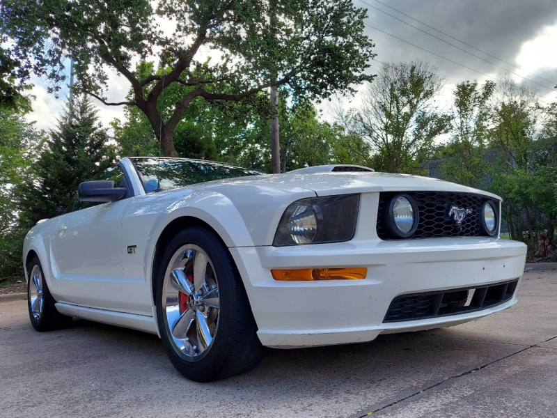 Ford Mustang 2008 price $14,495 Cash