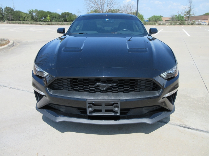 Ford Mustang Premium Fastback 1 OWNER 2019 price $25,877