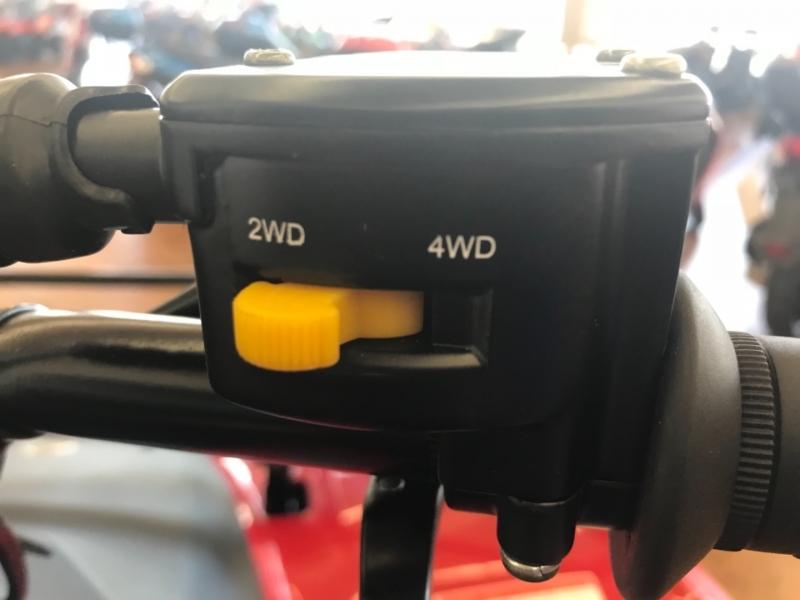 REBEL WEST POWERSPORTS RWP 300 4x4 2021 price $4,395
