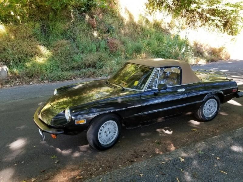 Alfa Romeo Spider Veloce 1981 price $3,995