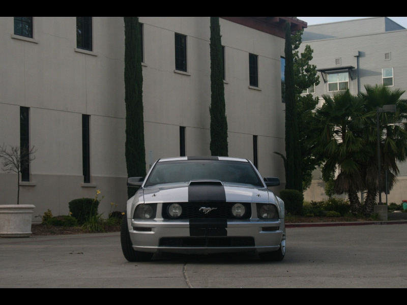 Ford Mustang 2008 price $10,999
