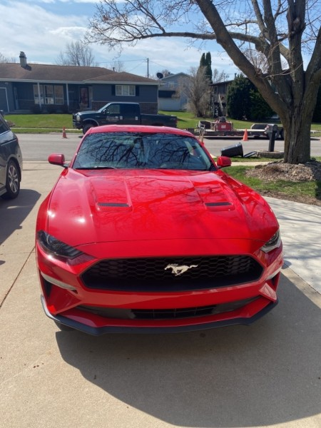 FORD MUSTANG 2018 price $25,495